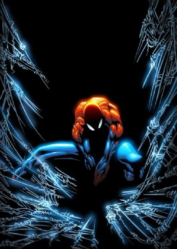 SPIDER MAN - WEB GLOW canvas print - self adhesive poster - photo print